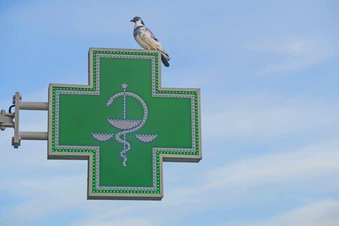 Pharmacy, Pharmacist, Medical Store
