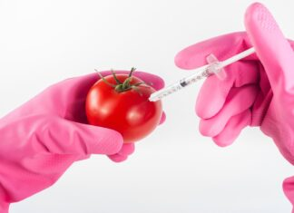 Laboratory Food